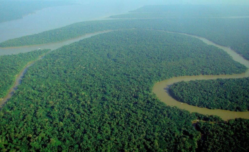 Extreme E Amazon rainforest