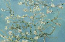 Vincent Van Gogh, Mandorlo in fiore, 1890, Van Gogh Museum, Amsterdam