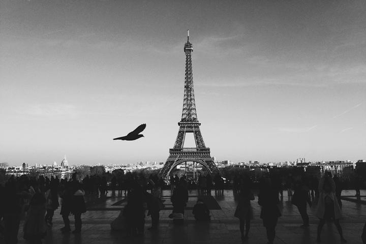 La Torre Eiffel - immagine del web